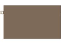 CDI Insight Imaging Company Logo